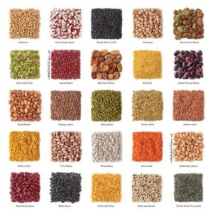 Beans and other Pulses and Legumes